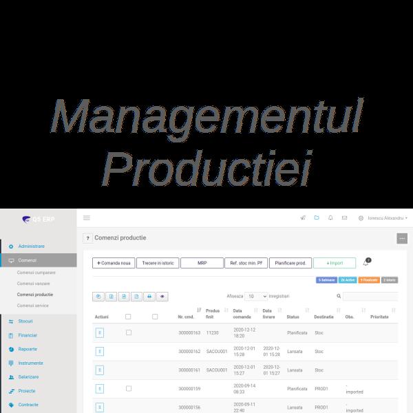 sistem erp Q5 - managementul productiei
